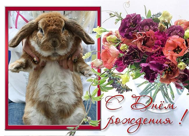 Поздравления с днем рождения открытки с зайцем