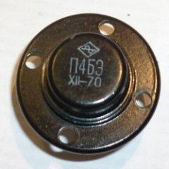dvm99