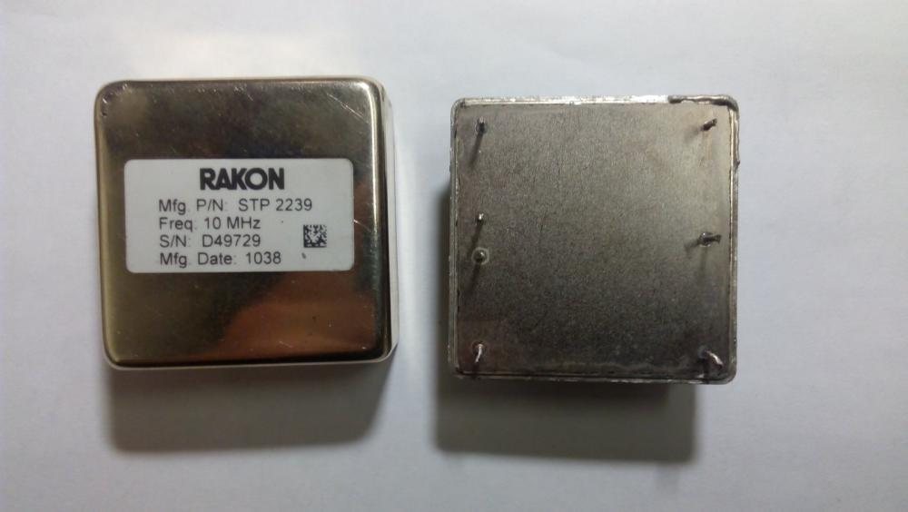 rakoon_1.jpg