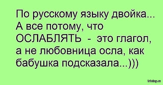 157269_10_trinixy_ru.jpg