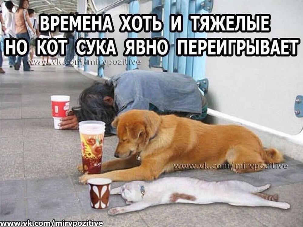 image (8).jpg