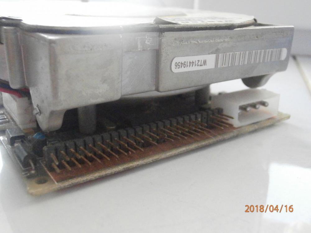 P4161139.JPG