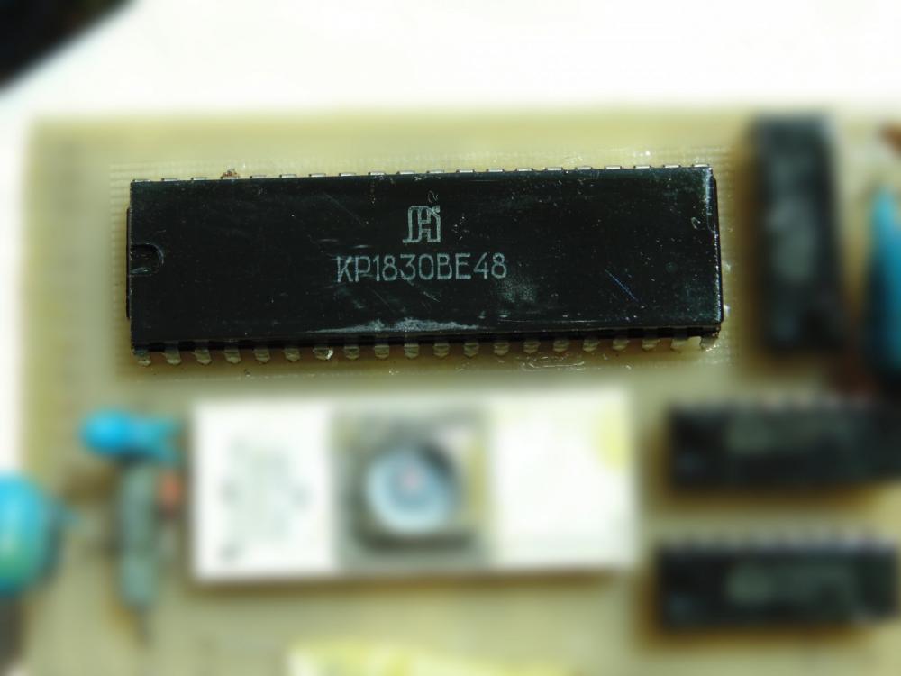 DSC00044-2.thumb.jpg.7eb149f9d2fd183791f6b676eeb211b7.jpg