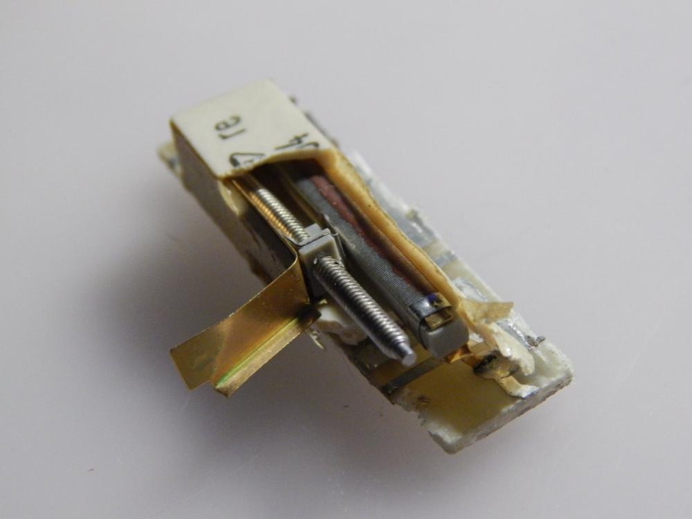 DSCN5258[1].JPG