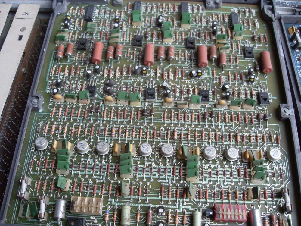 SDC10403.JPG