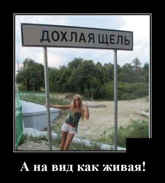 1596641275_demotivatory_09.jpg