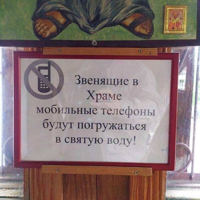 198369_14_trinixy_ru.jpg