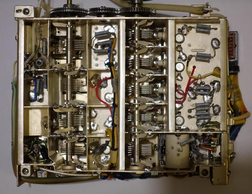 DSC02024.JPG